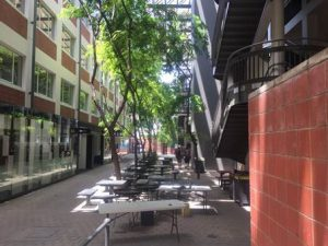 View of a small court yard with leafy shade and tables throughout the annex