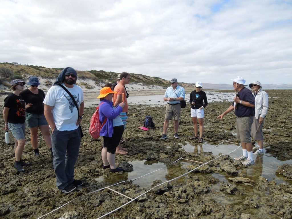 Gathering at the seaside for a survey