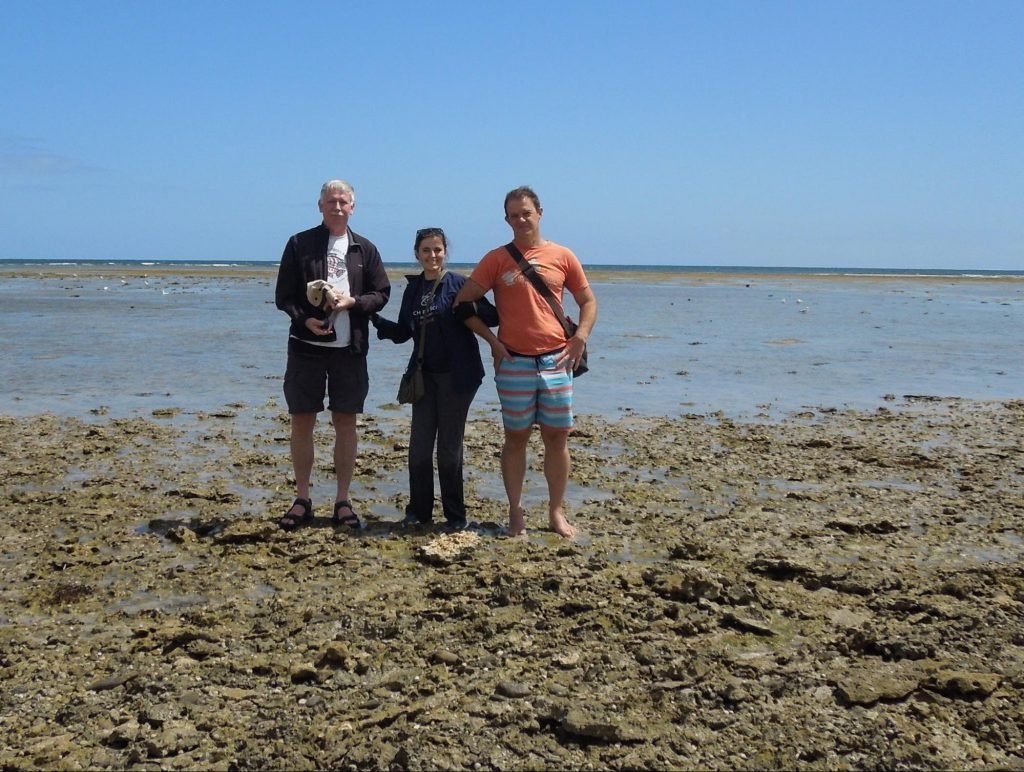 Standing on rock sea shore