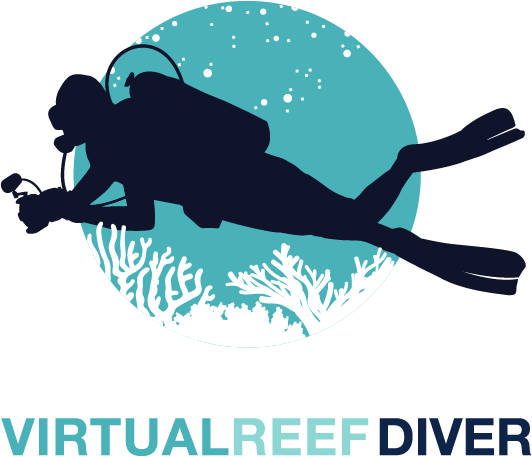 Virtual Reef Diver