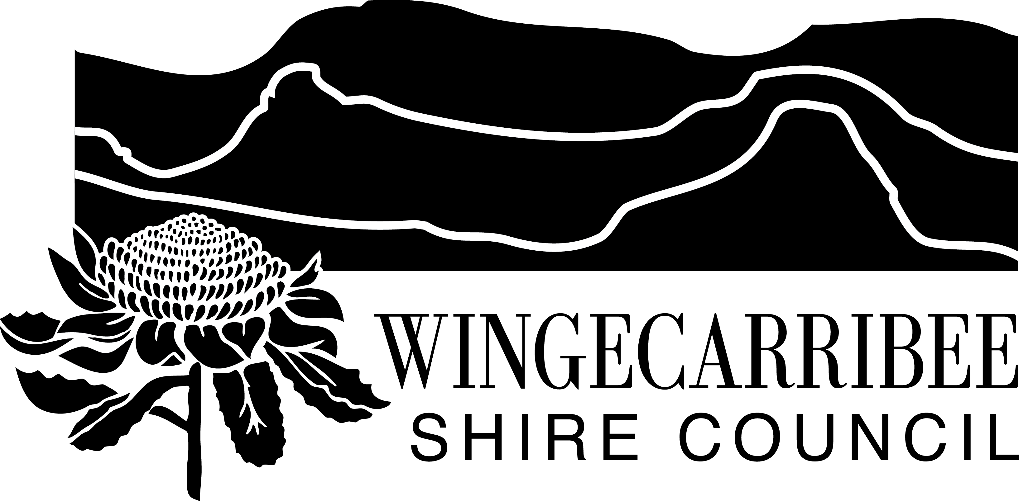 Wingecarribee